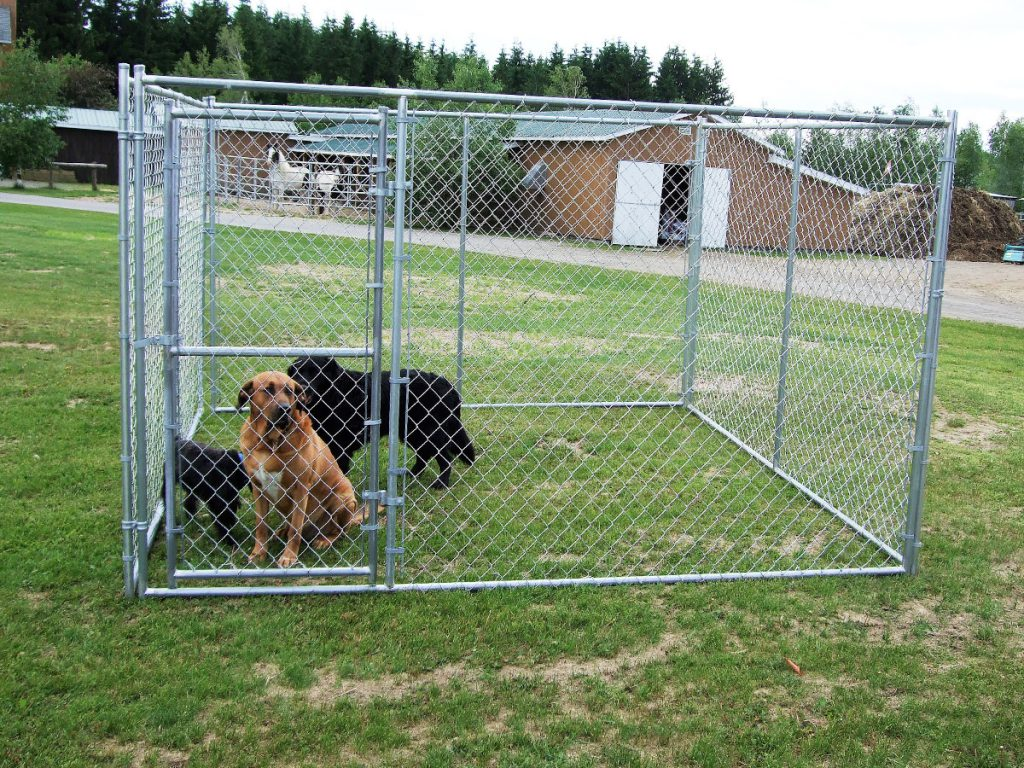 Enclos pour chiens
